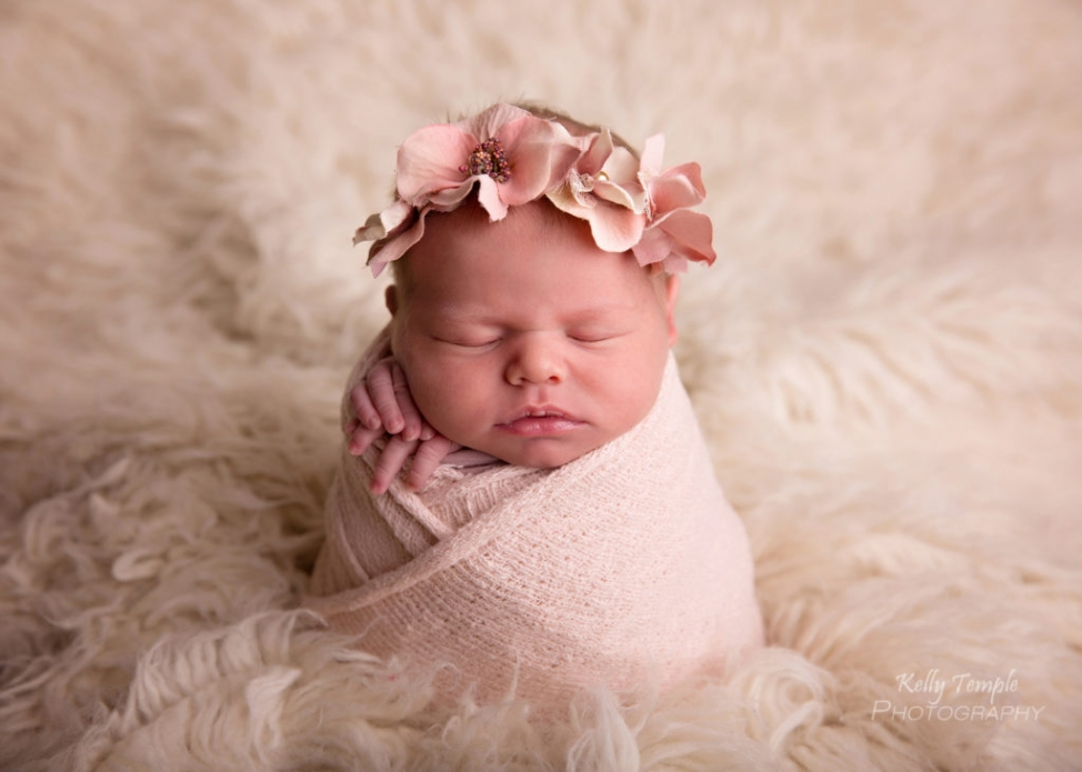 Here are a few of my favourite images from auroras adorable session paris ontario newborn photographer